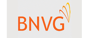 The British Neurovascular group